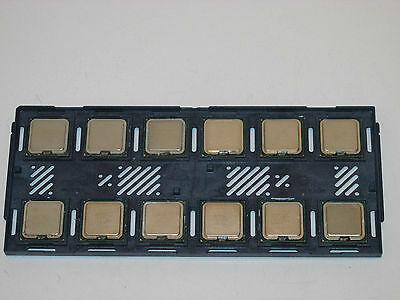 JOBLOT OF 12 X Intel Core 2 Duo E6300 - 1.86GHz Dual-Core (2M CACHE 1066MHz FSB)