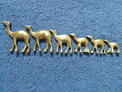 Family of 6 brass camels