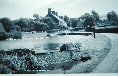Old Real Photo Postcard-  East Quantoxhead,somerset