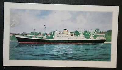 MV Hannover   Hamburg American Line   Combi Ship      Illustrated Colour Card