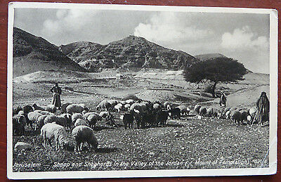 Vintage Postcard , Jerulsalem- Sheep & Shepherds in the Valley of the Jordan