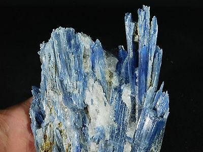 A HUGE Cluster of Bright BLUE KYANITE Crystals with Quartz! From Brazil 1000gr