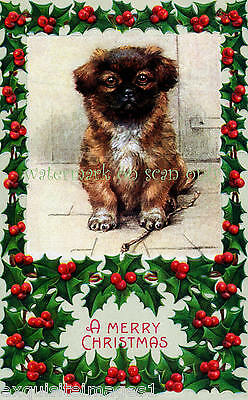 Christmas Pekingese Puppy Dog with Holly by Maud West Watson~ NEW Lge Note Cards