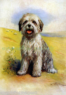 Antique Art~Old English Sheepdog PuppyNEW Lg Note Cards