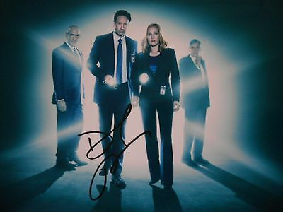 David Duchovny  8x10 auto photo in Excellent Condition