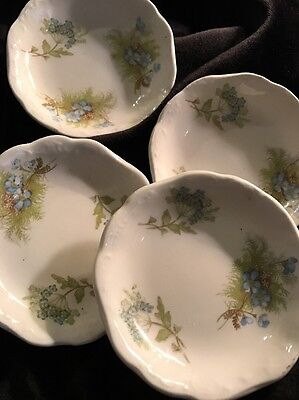 "Johnson Bros. Blue Flowers Royal Semi-Porcelain England butter pat 3"" plates"