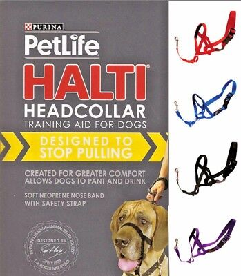 Halti Dog Headcollar Stops Pulling Kindly - Range of Sizes/Colours pet outlet