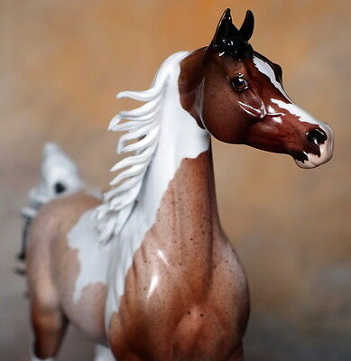 Peter Stone Model Horse TRISCUIT -- Glossy Roan Pinto Extreme Arab