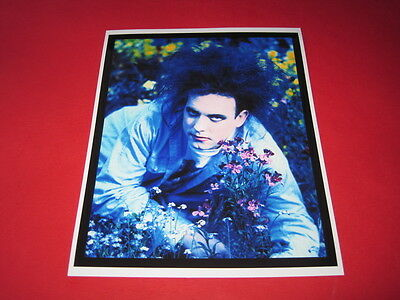 THE CURE ROBERT SMITH  10x8 inch lab-printed photo P/8819