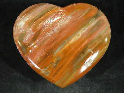 A BIG VERY Colorful Petrified Wood Fossil Carved HEART From Madagascar 392gr