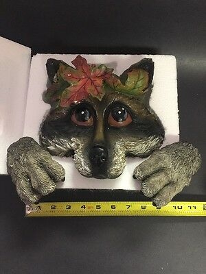 Randy Raccoon Peeper Wall Hanging Set #50545