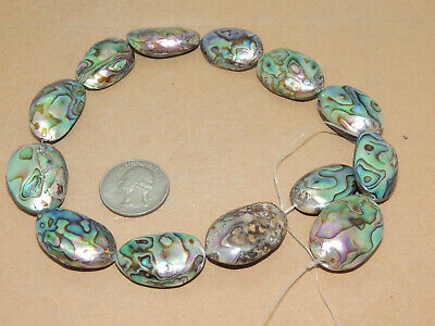 Paua Abalone Shell  Beads New Zealand 13 piece one strand (11961)