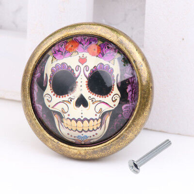 Retro Skull Drawer Cabinet Handle Cupboard Door Window Kitchen Pull Knob #07