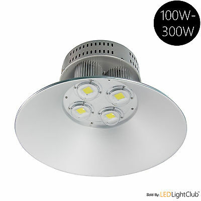 LED High Bay light Warehouse Lighting Indoor Industrial Area Light 100W-300W 19