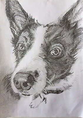 Pencil Drawings From Photographs - Personalised Portraits - QUICK SKETCH