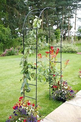 Self Assembly Black Garden Metal Arch Climbing Plants Garden Trellis Decorative