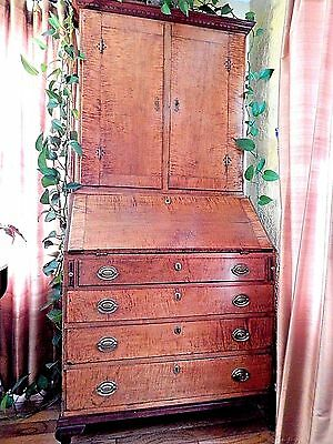 Spectacular Early American Curly Maple Blind Door Secretary Desk