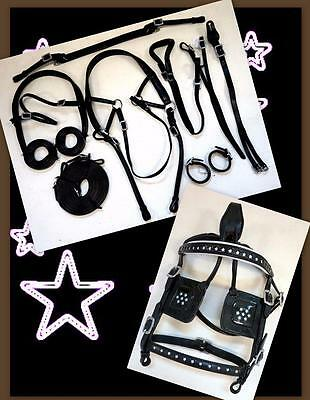 Back In! STARS Leather BLK WHITE Mini Sh Pony Driving Training Cart Show HARNESS