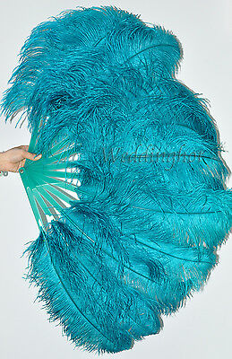 """A pair teal Single layer Ostrich Feather fans 24"""" x 41"""" with carrying box"""