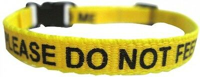 Please Do Not Feed Me Collar Yellow - Adjustable Collar and Quick Release Clasps