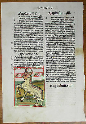 Incunable Leaf Hortus Sanitatis De Animalibus 3 Colored Woodcut Venice - 1500