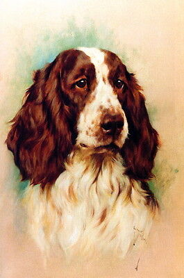 Wardle~Beautiful English Springer Spaniel Puppy Dog Profile~NEW Large Note Cards