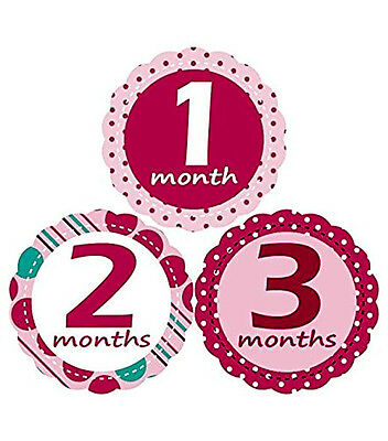 Baby Monthly Stickers for Girl Bodysuit Infant Great Shower Gift Photo Props Set