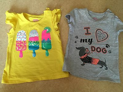 Girl's Summer T-Shirts Lot of 2 Size 12-24 Months EUC