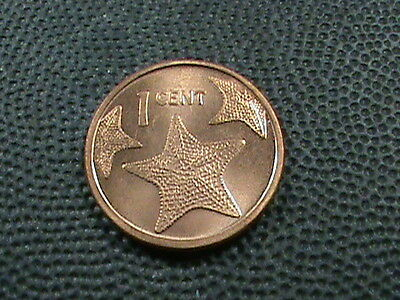 BAHAMAS    1  Cent    2009    BRILLIANT  UNCIRCULATED   ,    STARFISH