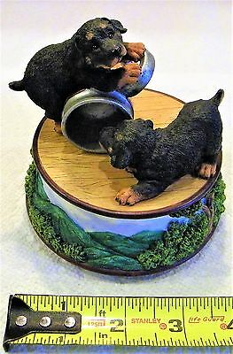 Rottweiler Statue, Perfect Condition, over 20 years old, Music Box