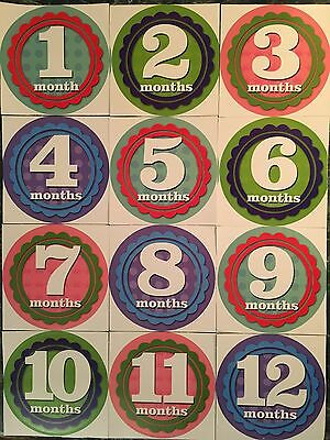 Baby Monthly Milestone Stickers 1 - 12 Months