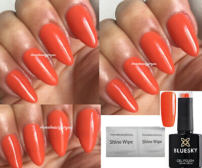 BLUESKY CS 19 Terracotta Burnt Orange Nail Gel Polish Uv Led Soak ...