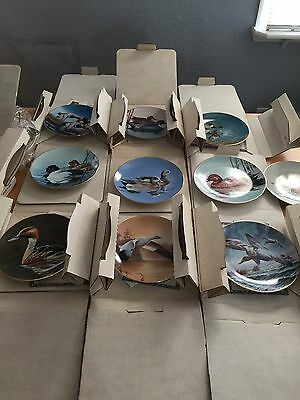 Complete Set Of Federal Duck Stamp Plates Collection W.s. George