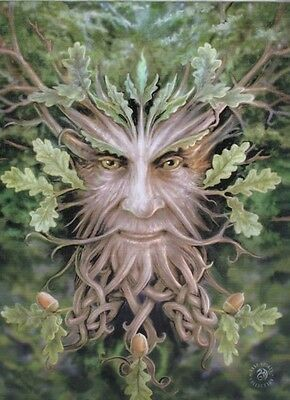 Anne Stokes Gothic Art Green Man, Oak King Canvas Print 25cmx19cm