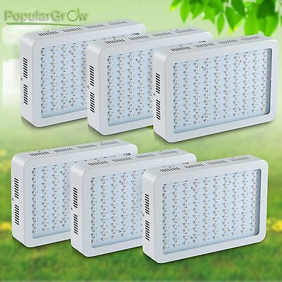 6PC Populargrow 300W LED Grow Light Full Spectrum Panel For Medical Indoor Plant