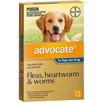 Advocate for Dogs Over 25kg 1 PACK  Exp. 07/2020 * GENUINE 1PK *  Single Dose