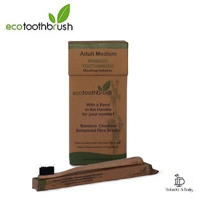 NEW Eco Toothbrush Charcoal Black Adult Medium 12 Pack Biodegradable Oral Care