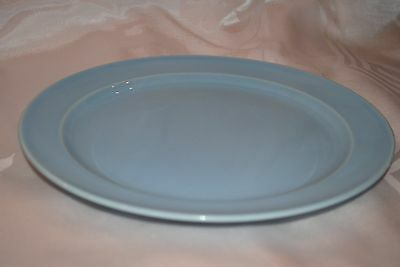 """Taylor Smith LuRay Pastels USA 9 1/4"""" Round Rimmed Dinner Plate Blue"""