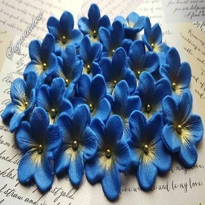 20 EDIBLE SUGAR flowers cake cupcake toppers decorations airbrushed royal blue