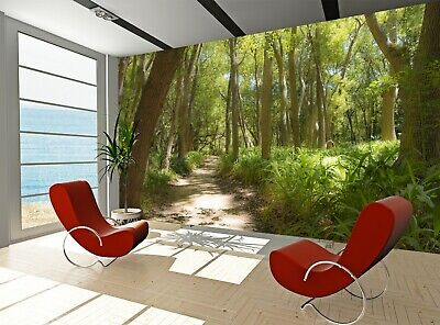 Forest, Way Wall Mural Photo Wallpaper GIANT WALL DECOR Paper Poster Free Paste