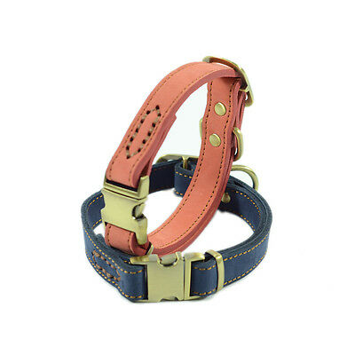 Small Cat Dog Collar Kitty Puppy Leather Collar Pet Supplies 30-43 CM Adjustable