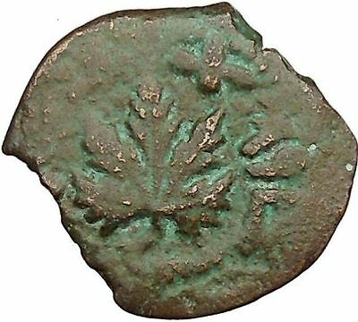 1st JEWISH Freedom Revolt War vs ROMANS Ancient Biblical Jerusalem Coin i36596