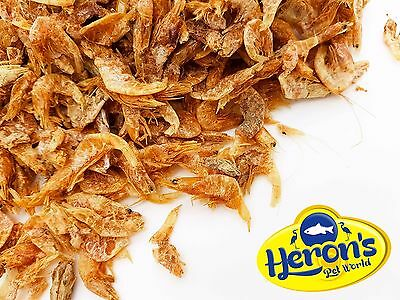 HERONS Dried Shrimp, 3 sizes - small, medium, large TURTLE TERRAPIN CICHLID FOOD
