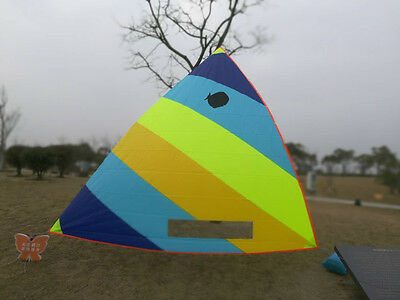 Sunfish Sailboat Sail