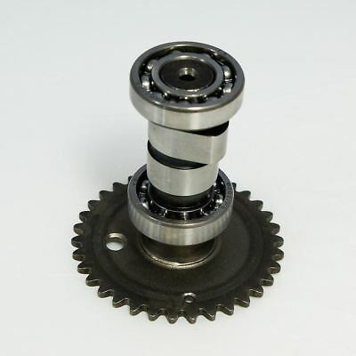 139QMB GY6 50 Camshaft for Lexmoto Molly 50 DFE50QT-3