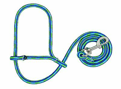 Weaver Leather Poly Rope for Sheep Halter with Snap, Lime/Hurricane Blue/Royal B
