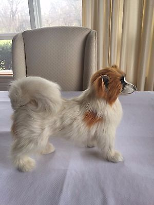 Realistic Lifelike Papillon Dog w/ Animal Fur Large Size