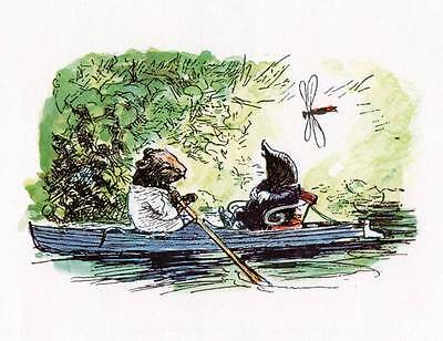 Wind in the Willows..Original Vintage Print MOUNTED 'Dragonfly and Boat'