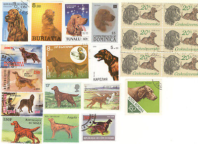 IRISH SETTER * 10 Gorgeous International Postage Stamps *Great Gift*
