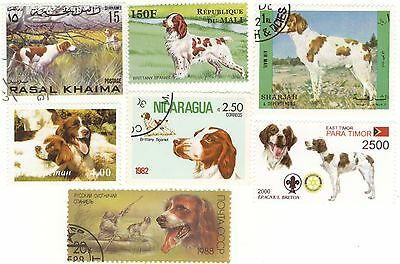 BRITTANY SPANIEL  * 7 Beautiful International Dog Postage Stamps *Great Gift*